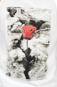 tupac the rose that grew from concrete poem - Google Search
