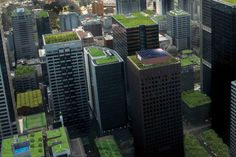 This article highlights the many benefits of green roofs, including absorbing carbon, reducing energy consumption, & managing stormwater & acoustic insulation!