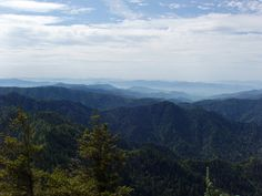 Looking North From Myrtle Point on Mt, LeConte in Great Smoky Mountains National Park.