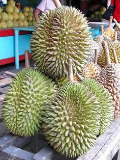 Indonesian most delicious fruit - Durian Fruit And Veg, Fruits And Veggies, Fresh Fruit, Vegetables, Delicious Food Image, Delicious Fruit, Exotic Fruit, Tropical Fruits, Pitaya