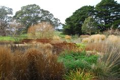 The garden as it slows down for winter. Photo: Michael McCoy