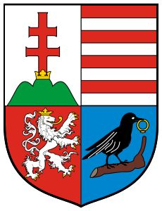 Coat of arms of Mathias Corvinus of Hungary - Matthias Corvinus, Hungary History, Ottoman Turks, 15th Century, Coat Of Arms, Ancestry, Warfare, Knight, Medieval