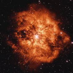 38 отметок «Нравится», 1 комментариев — Astrobitácora (@astrobitacora) в Instagram: «Esta llamativa nebulosa es M1-67. Es el producto del material expulsado por la estrella central, WR…»