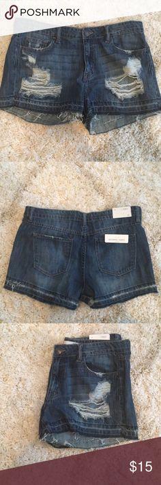 Ripped jean shorts Size 29!! Brand new! vanilla sky Shorts Jean Shorts
