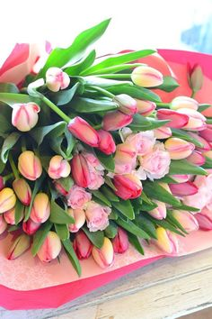 Good Morning Cards, Tulips Garden, All Flowers, Spring Time, All The Colors, Floral Arrangements, Succulents, Rose, Plants