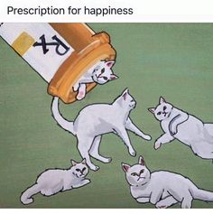 >^..^< The Best Medicine