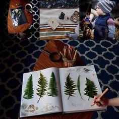 Wild Explorers Club Review on Our Montessori Life
