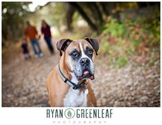 Family Photo with dog - Ryan Greenleaf Photography Blog