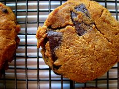 Pumpkin chocolate chip cookie recipe with lots of coconut goodness! Gluten free, Paleo, Grain Free, Dairy Free, GAPS Diet