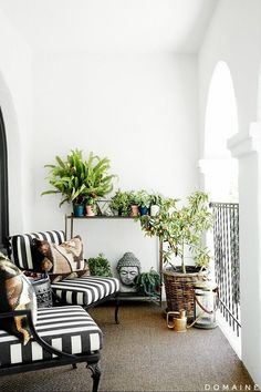 Tiny but beautiful balcony garden space. White-washed walls set the scene for some statement lounge chairs, and a natural floor covering completes the transformation.