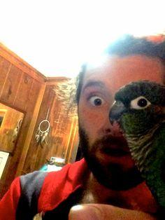Ici il s'agit d'un homme et d'une perruche! On croirait volontiers que c'est un homme avec un demi  visage de perruche!