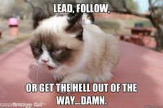 lead | quickmeme »
