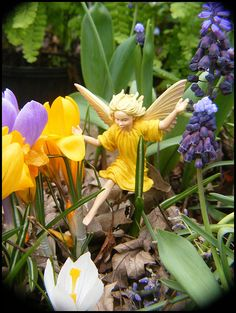 Every early spring (usually March) the Matthaei Botanical Gardens (Ann Arbor) indoor Conservatory has a Flower Fairies display