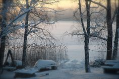Photo by Liivia Sirola Its Cold Outside, Let It Snow, Winter Time, Inspire Me, Finland, Scandinavian, The Outsiders, My Photos, Pictures