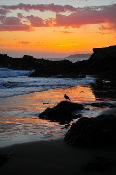 Vivid Sunset by mrclick456 on Flickr.