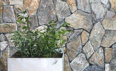 Eco Outdoor - Walling - Free Form - Wamberal