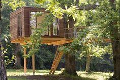 Baumhaus für große Jungs