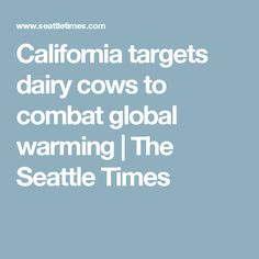 California targets dairy cows to combat global warming | The Seattle Times