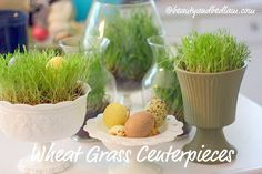 I spent  a few dollars and created such fun spring centerpieces.