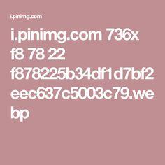 i.pinimg.com 736x f8 78 22 f878225b34df1d7bf2eec637c5003c79.webp