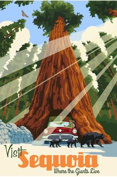Vintage Travel Poster | Sequoia National Park, California
