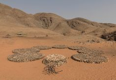 Namibia - Andrew Rogers, Sculptures, Land Art and Artist