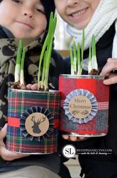 Fun plant pots for a Christmas gift
