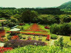 Jardin in Boquete Panamá