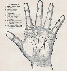Palmistry Science Chart