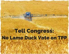 No Lame Duck Vote on TPP