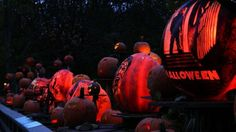 Pumpkin-lanterns on display in the Providence (25 photos)
