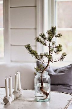 Christmas Decorations - my scandinavian home: A touch of Scandinavian Christmas decorating inspiration Nordic Christmas, Mini Christmas Tree, Simple Christmas, Winter Christmas, All Things Christmas, Christmas Home, Rustic Christmas, Beautiful Christmas, Minimalist Christmas Tree