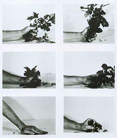 Dennis Oppenheim. Compression - Poison Oak, 1970