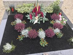 Grabbepflanzung Herbst The post Grabbepflanzung Herbst appeared first on DIY Projekte. Grabbepflanzung Herbst The post Grabbepflanzung Herbst appeared first on DIY Projekte. Memorial Day Decorations, Grave Decorations, Home Flowers, May Flowers, Flower Arrangements Simple, Best Wedding Gifts, Floral Photography, Flower Garlands, Plantar