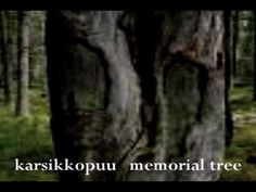 The protection of the tree, still a tradition in modern day Finland when you build your own house and create a home for your family | Pagan Tree Worship in Finland - YouTube