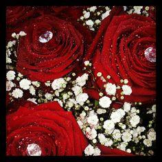 #rose #rosse