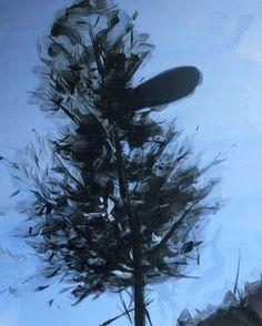 "Andrea Bartošová; Painting, ""Festo"""