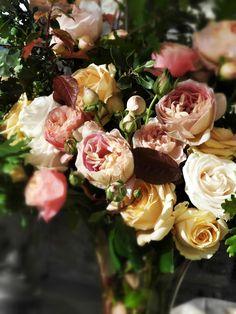 Roses. La Rosa Canina FIRENZE www.larosacaninafioristi.it