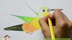Comment dessiner un colibri Coin Art, Crayons, Bird, How To Draw, Atelier, Colouring Pencils, Birds, Colored Pencils