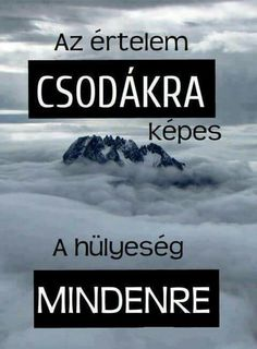 Read Idézetek from the story Az új lány (SZJG) by DemjenMikka (Bogi XD) with 685 reads. Motivational Quotes, Inspirational Quotes, Funny Memes, Jokes, Fitness Motivation, Funny People, Funny Cute, Quotations, Texts