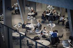 Campus Örebro: Casa Nova,© Felix Gerlach