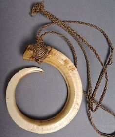 11 5/8 inch 360+ Circle Papua New Guinea PNG Pig Tooth Tusk Boar Hog Necklace