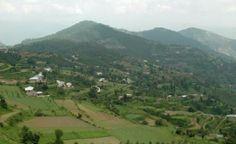 BestShimlaManali | HoneymoonPackage | TourPackageIn | Shimla | shimla manalihoneymoon | package