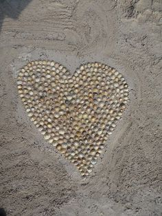 shells.  this would be an adorable couple photo if they laid on the sand on either side of the heart.