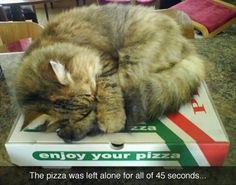 Like my Pizza warm :-)