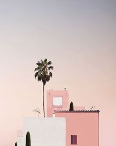 Pink Beach - My Jolie Candle Pink Beach Pink sunset. Pink Sunset, Pink Beach, Palm Tree Sunset, Palm Trees, Rosa Strand, Summer Memories, French Photographers, Pink Aesthetic, Aesthetic Pictures