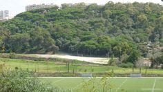 Mata do jamor e os campos de grandes jogos do Centro Desportivo Nacional do Jamor.