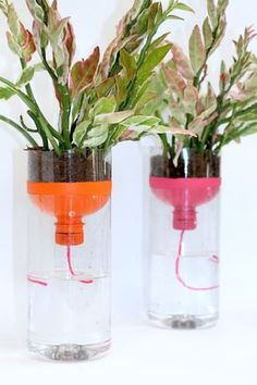 Recycled Planters, Recycled Bottles, Diy Planters, Planter Ideas, Fall Planters, Indoor Planters, Hanging Planters, Hanging Baskets, Diy Self Watering Planter