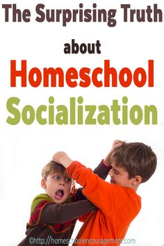 Homeschool Socialization. Again. Seriously, get over it already.   this is an amazing article!