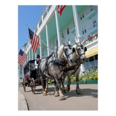 Remember your visit to Mackinac Island and the Grand Hotel with this shot of a horse drawn carriage . or simply add the postcard to your collection and keep dreaming of your next getaway. Beautiful Horse Pictures, Beautiful Horses, Mackinac Island Michigan, Horse Carriage, Grand Hotel, Great Places, Backdrops, Travel Photography, Vacation